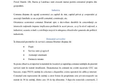 Statutul-comunei-Brusturi_Page_26